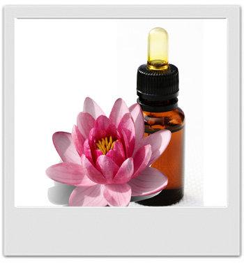 Parfum huileux au lotus rose - recettes de cosmétiques maison avec MaCosmetoPerso