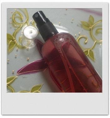 Délice hydratant pour le corps aux fruits rouges - recette de cosmétique naturel maison avec MaCosmetoPerso
